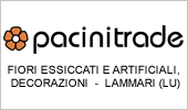 Pacinitrade srl - Logo carosello